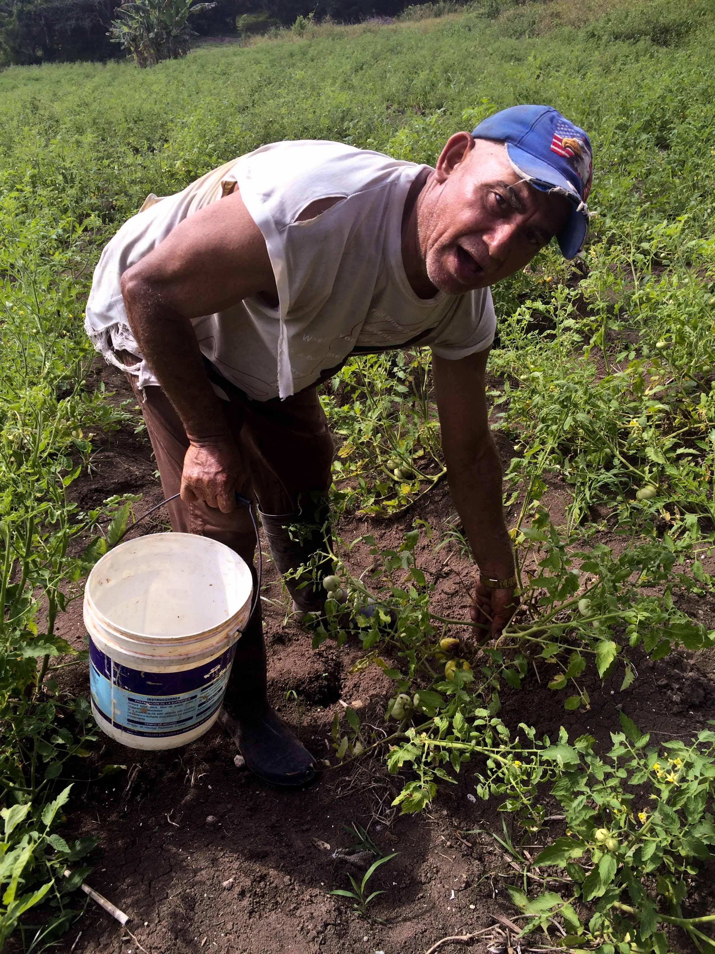 Lutguery Maceira, campesino de Jutinicú (Foto: Elaine Díaz)