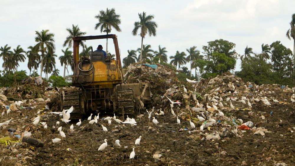 Una parte de la basura se buldocea diariamente, pero no se recubre con la tierra necesaria (Foto: Elaine Díaz)