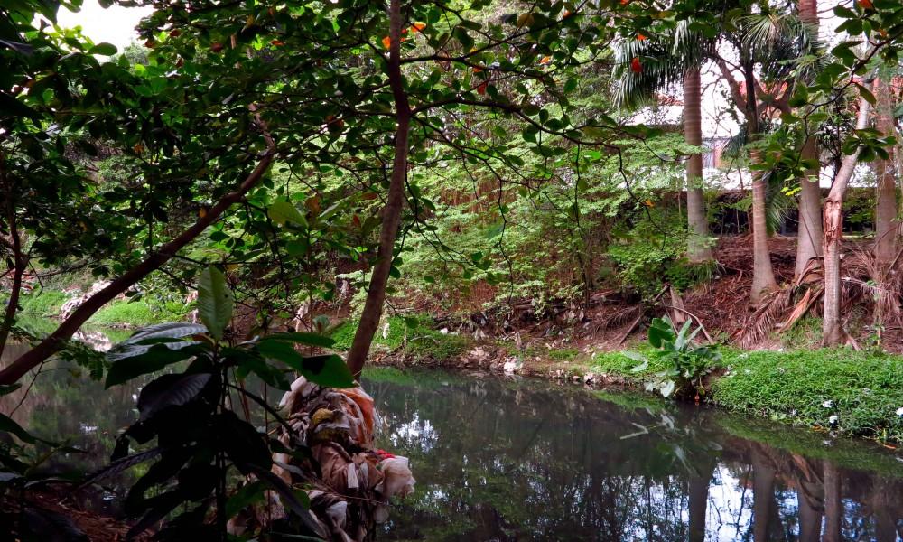 Este trecho de río pasa por la parte trasera del Palacio de Convenciones (Foto: Geisy Guia)
