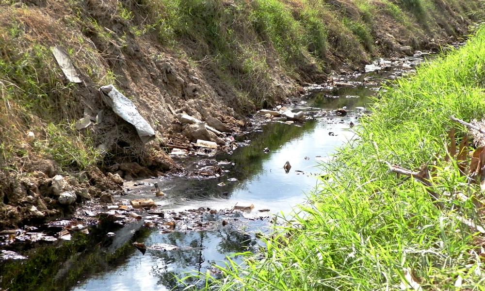 Lixiviado, residuo líquido altamente contaminante y resultado final de proceso de descomposición de la basura (Foto: Julio Batista)